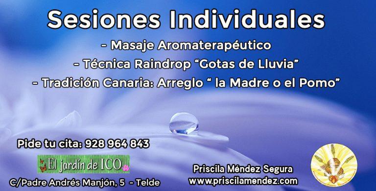 Sesiones Individuales, Priscila Méndez Segura