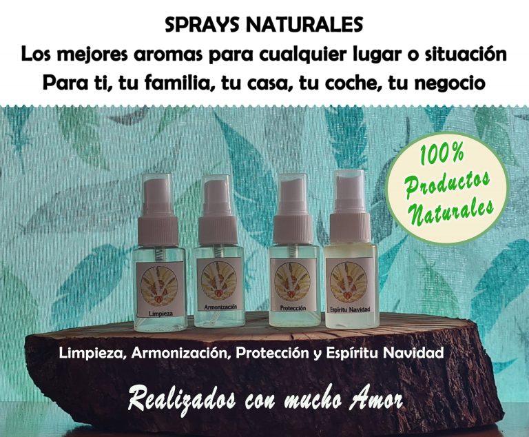 Sprays Naturales, Priscila Méndez Segura